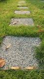 Grassy garden Stock Photos