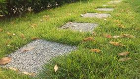 Grassy garden Stock Image