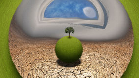 Grassy globe. With tree in desert. This image created in entirety by me from my own images and is entirely legal for me to sell and distribute Royalty Free Stock Photo