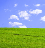 Grassy Green Hill Royalty Free Stock Images