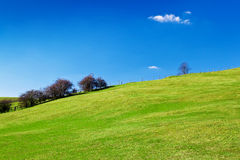 Grassy green hill with a beautiful clear sky Royalty Free Stock Photo