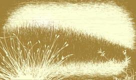 Grassy grunge Royalty Free Stock Image