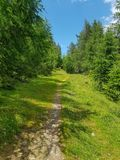 Grassy hiking path in alpen mountains stock image