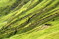 Grassy hill. With some erosion (taken in mountain chain Prokletie in Monte Negro near Albania and Kosovo Stock Image