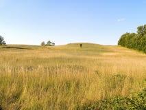 grassy hill 库存照片