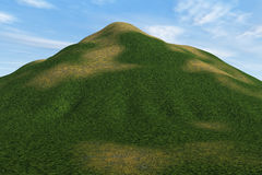 Grassy Hill. Illustration of a mound with various grass textures vector illustration