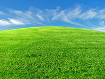 Grassy hill. A grassy hill is a great place to test a lawn mower Stock Photos
