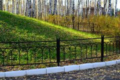 Grassy hill behind the iron fence. Stock Photos