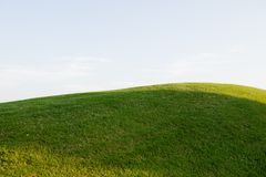 Grassy hill on a golf course Stock Image