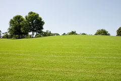 Grassy Hill In Park Royalty Free Stock Photography