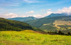 Grassy hill in late summer. Beautiful mountainous landscape on a cloudy day Stock Images