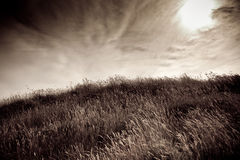 Grassy hill with looming sky Stock Image