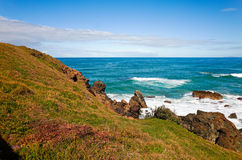 Grassy hill and rocks on seashore at Port Macquarie Australia. White crested waves crashing on big jagged rocks at Lighthouse Beach Stock Image