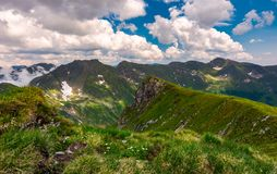Grassy hill on rocky cliffs of Fagaras mountains. Beautiful summer landscape of Southern Carpathians, Romania stock photos