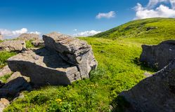 Grassy hill side with boulders. Beautiful summer scenery in mountains Royalty Free Stock Photos
