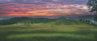 Grassy hill. & x27; Grassy hill & x27;, beautiful natural green grass meadow field hill at dawn.colorful sky st sun rises royalty free stock photo