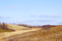 Grassy hills Stock Image