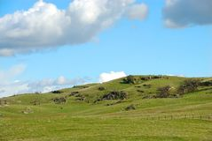 Grassy Hills of CA Farmland Royalty Free Stock Photo