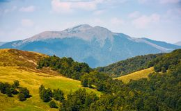 Hills with forest and high peak in a distance Royalty Free Stock Photography