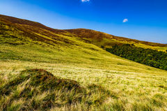 Grassy hills on late summer day Stock Photos