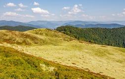 Grassy hills of mountain ridge. Beautiful nature background Stock Photography