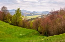 Grassy hills of mountainous rural area. Beautiful countryside landscape in springtime on a cloudy day Royalty Free Stock Photo