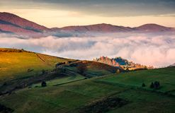 Grassy hillside above the thick fog in mountains. Gorgeous sunrise in rural landscape Royalty Free Stock Photos
