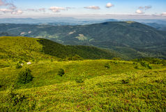 Grassy hillside of Carpathian mountain range. Beautiful mountain scenery in summer time Royalty Free Stock Photography
