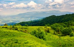 Grassy hillside of Carpathian mountains. Magnificent Borzhava mountain ridge in the distance. viewing location mountain Pikui Stock Photo
