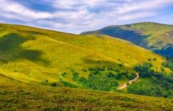 Grassy hillside on mountain in summer Stock Photo