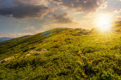 Grassy hillside of mountain in summer at sunset Stock Photos