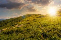 Grassy hillside of mountain in summer at sunset Stock Photos