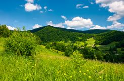 Grassy hillside of mountainous countryside. Lovely summer scenery with village in a green valley Stock Images