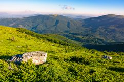 Grassy hillside in mountains. Lovely summer landscape of Carpathian mountains Stock Photography