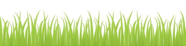 Grassy Stock Photography