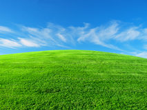 Grassy knoll. A grassy knoll is a great place to test a lawn mower Stock Photos