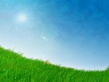 Grassy knoll with blue skies Stock Photography