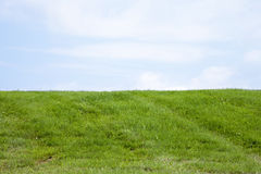The Grassy Knoll Royalty Free Stock Image