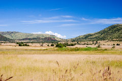 Grassy landscape. Wide angle Royalty Free Stock Images