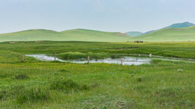 Grassy landscape and hills. A landscape of grassy meadows with hills in the horizon and horseback riders royalty free stock photography