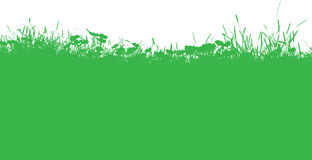 Grassy landscape Stock Photos