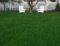 Grassy Lawn. With private shady place to rest in lawn chairs Stock Images