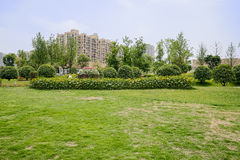 Grassy lawn and flowering garden before dwelling buildings in su Stock Images