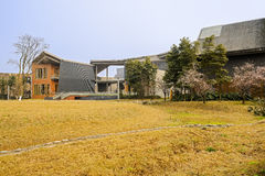 Grassy lawn in front of Chinese old-fashioned buildings on sunny Royalty Free Stock Photography