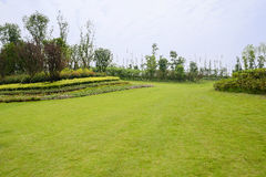 Grassy lawn and garden on hillside in cloudy summer Stock Images