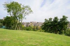 Grassy lawn on hillside near houses in sunny autumn Royalty Free Stock Photos