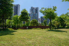 Grassy lawn on slope before modern buildings in sunny summer Royalty Free Stock Photography