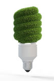 Grassy light bulb Stock Photos