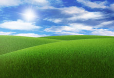 Grassy meadow. A grassy meadow with hills and clouds on summer day Royalty Free Stock Images