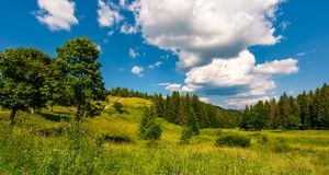 Grassy meadow among the forested hills. Beautiful summer landscape under the blue sky with row of clouds Stock Image